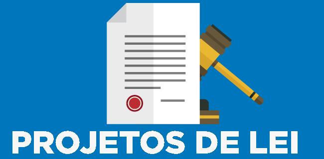 Prestação de contas: Projetos de lei aprovados do Vereador Professor Aleks Palitot
